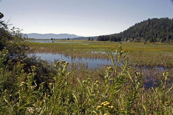 Pend Orielle Lake