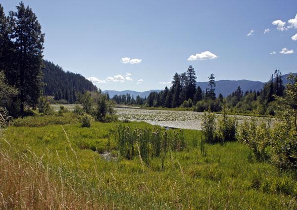 The Clark Fork River.