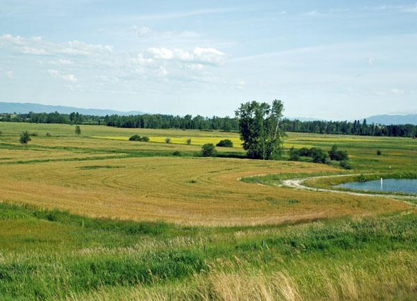 More Montana farmland.